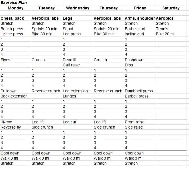 Fitness Plan Template Workout Schedule Template Free Word Excel Pdf